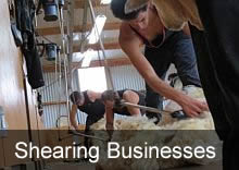 Shearing Businesses